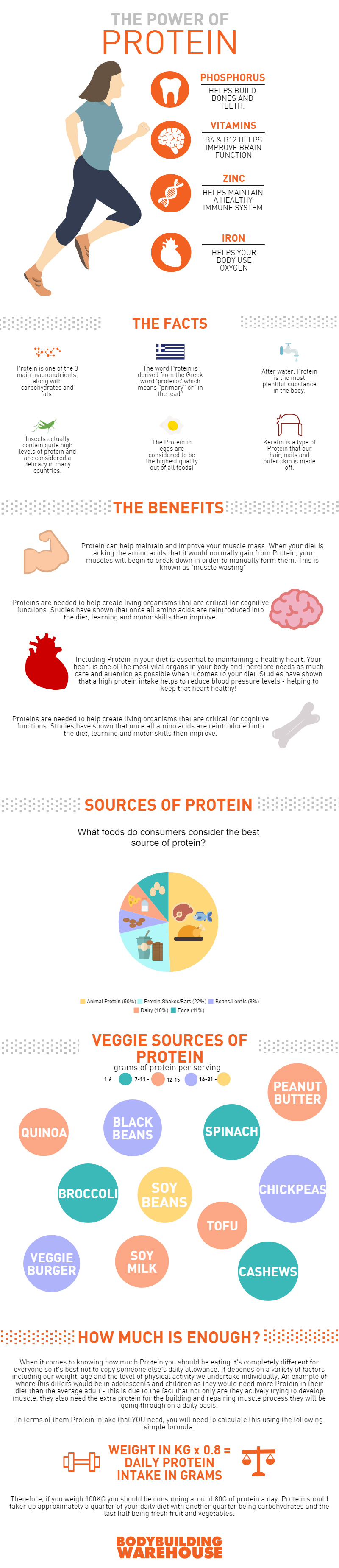 High Protein Infographic